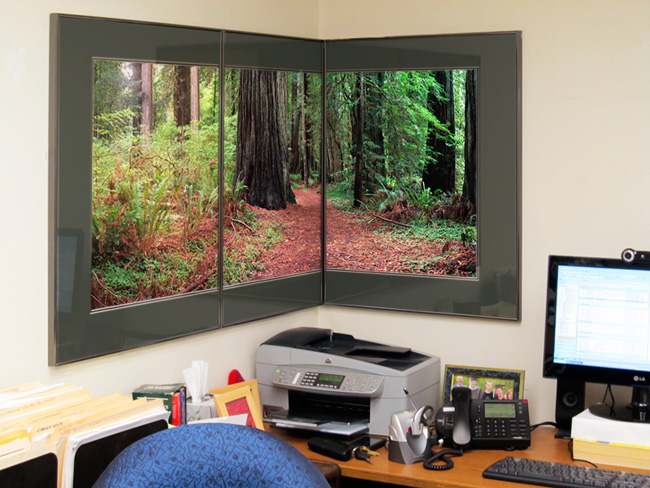 """Smith River Redwoods Triptych"""