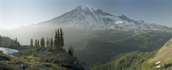 Mt Rainier from Plummer Peak, Longmire, Washington