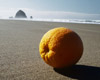 Orange with a View, Cannon Beach, Oregon